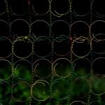 minimalis_art_41